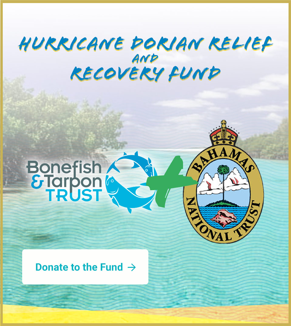 Help us provide relief to the Bahamas after Hurricane Dorian!