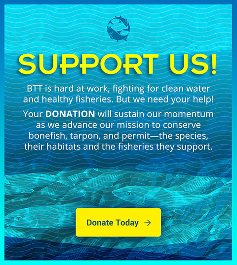 donate to bonefish and tarpon trust