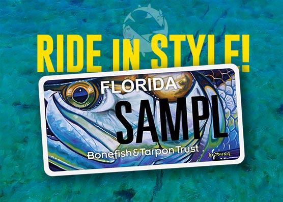 Bonefish & Tarpon Trust License Plate